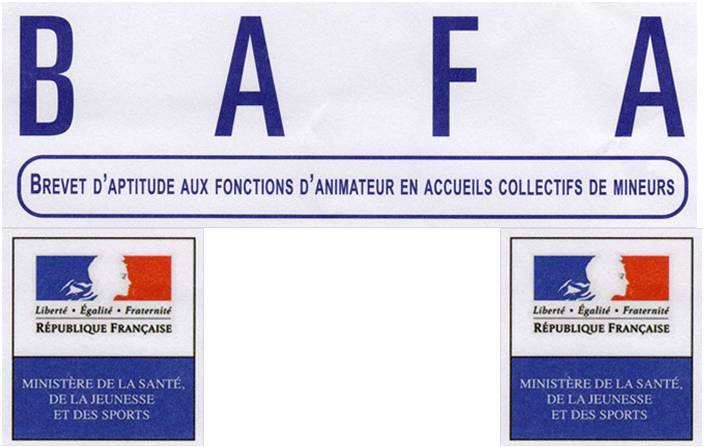 Bafa Bafd Brevet D Aptitude Aux Fonctions D Animateur