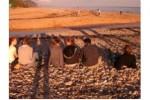 wec-camps-beach
