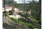 timothee-jardin-maison